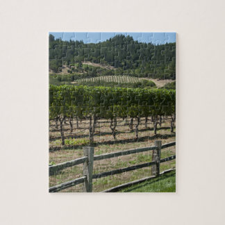 Napa Valley Vineyard with Rustic Fence Jigsaw Puzzle