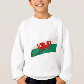 National Flag of Wales, The Red Dragon Patriotic Sweatshirt
