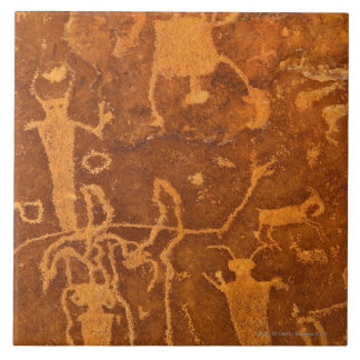 Native American petroglyphs, Rochester Panel, Tile
