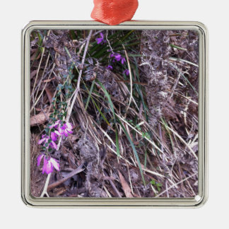 Native Australian wild grasses in flower Silver-Colored Square Decoration