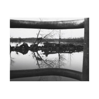 Natural Frame B&W Canvas Print