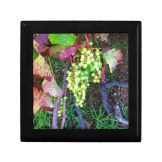 Natural Grapes Gift Box