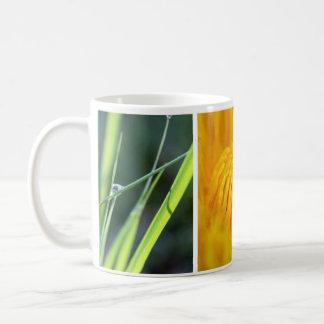 Nature Basic White Mug