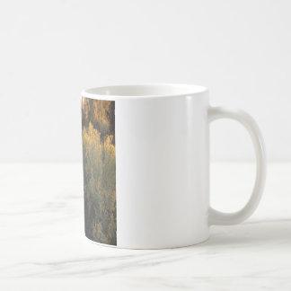 Nature Canyon Desert Brush Coffee Mug