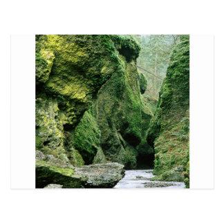 Nature Rocks Green Mould Postcard