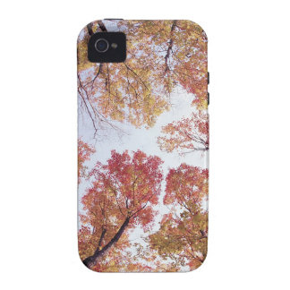 Nature Trees Autumn Red Sky Vibe iPhone 4 Covers
