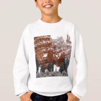Nature Winter Cold Canyon Sweatshirt