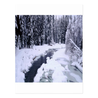Nature Winter Snowy River Postcard