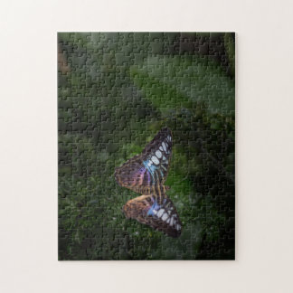 Nature's Beauty- 2 Jigsaw Puzzle