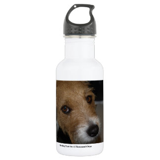 Naughty Dog Ate The Chips Bad Dog Ate The Cheese 532 Ml Water Bottle