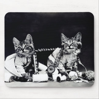 Naughty Kittens Mouse Pad