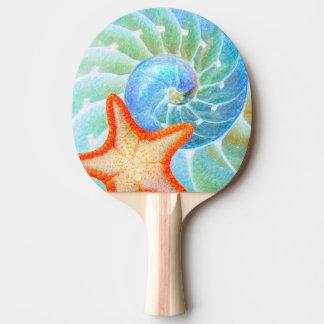Nautilus And Starfish