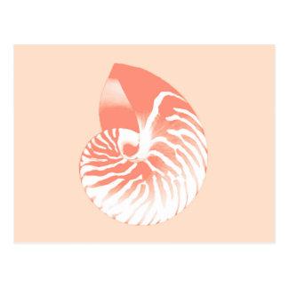Nautilus shell - coral orange and white postcard