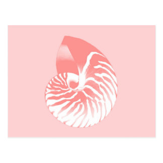 Nautilus shell - coral pink and white postcard