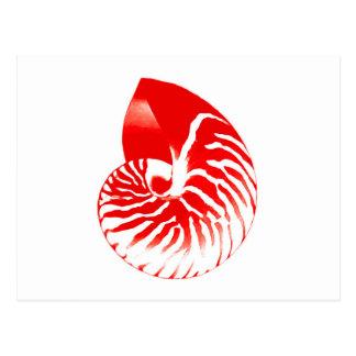 Nautilus shell - dark red and white postcard