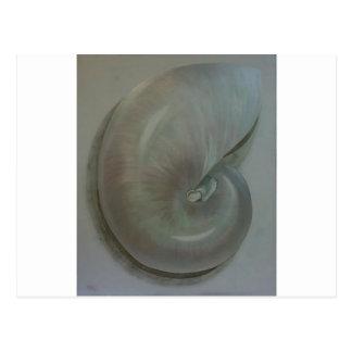 ''Nautilus Shell'' Postcard