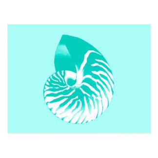Nautilus shell - turquoise, aqua and white postcard