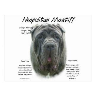 Neapolitan Mastiff (grey) History Design Postcard