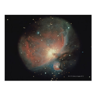 Nebula in Orion Postcard