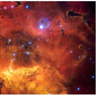 Nebula NGC 2647 NASA Space Astronomy Cut Outs