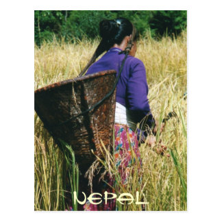 Nepal greetingcard post cards