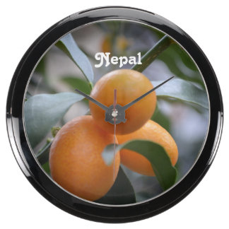 Nepal Kumquats Aquarium Clocks