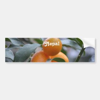 Nepal Kumquats Bumper Sticker