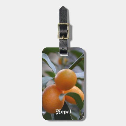Nepal Kumquats Luggage Tag