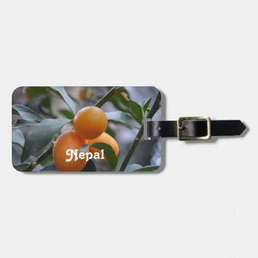 Nepal Kumquats Luggage Tags