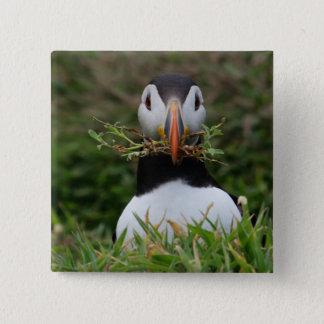 Nest Builder Puffin 15 Cm Square Badge