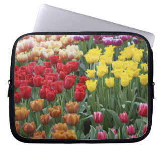 Netherlands, Keukenhoff Gardens, tulips. Laptop Sleeve