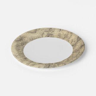Nevada 6 paper plate