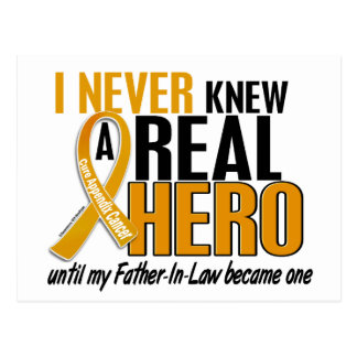 Never Knew a Hero 2 Father-In-Law Appendix Cancer Postcard