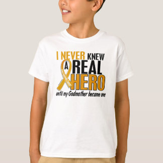 Never Knew a Hero 2 Godmother Appendix Cancer T-Shirt