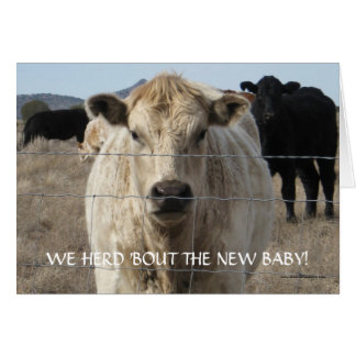 New Baby Congratulations - Cattle Herd - Western Card