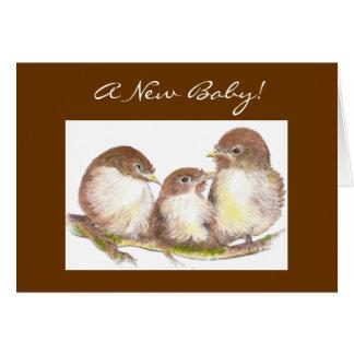 New Baby, Congratulations, Cute Birds Greeting Card