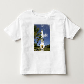 New Caledonia, Amedee Islet. Amedee Islet Toddler T-Shirt