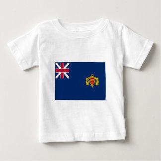 New Hampshire Second Regiment Flag Baby T-Shirt