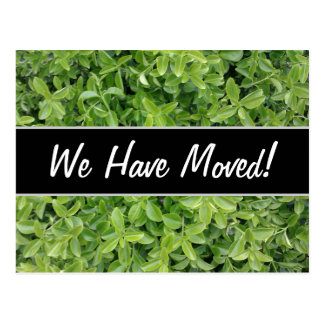 New House; Green Hedge Shrub Type Plant Photograph Postcard