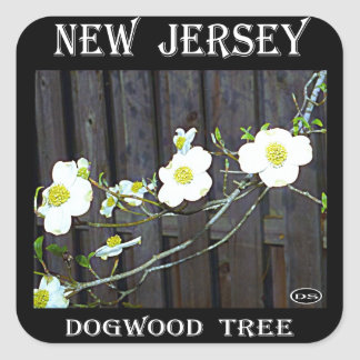 New Jersey Dogwood Square Sticker