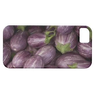 New Jersey grown purple eggplants Case For The iPhone 5