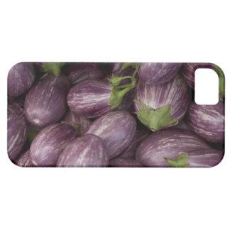 New Jersey grown purple eggplants iPhone 5 Cases
