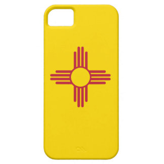 NEW MEXICO BARELY THERE iPhone 5 CASE