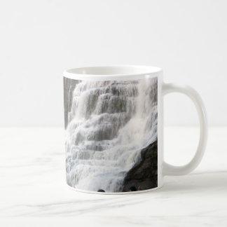 NEW YORK STATE WATERFALLS mug