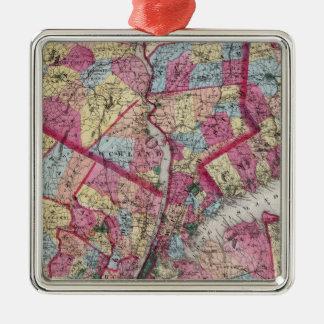 New York & vicinity Christmas Ornament