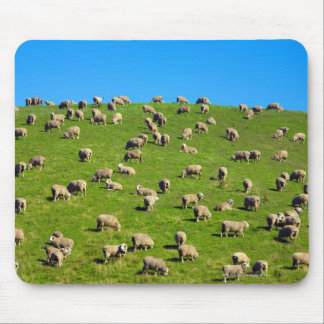 New Zealand, South Island, Canterbury Mouse Pad