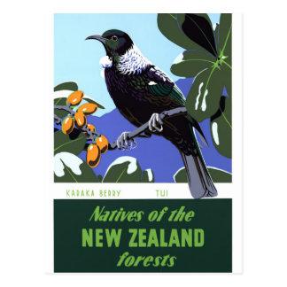 New Zealand Vintage Travel Poster Restored Postcard
