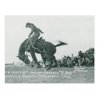 Nick Knight riding T. Joe at Cheyenne Frotier Days Postcard