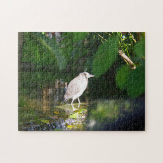 Night Heron Bird, 11x14 Photo Puzzle with Gift Box