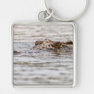 Nile Crocodile Silver-Colored Square Key Ring